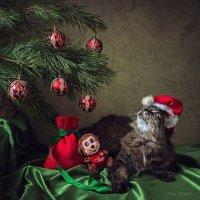 Санта загадывает новогоднее желание :: Ирина Приходько