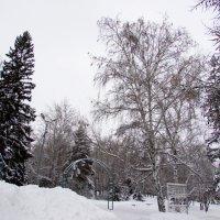 Белый, белый снег мне ночами снится :: раиса Орловская