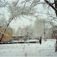 Снегопад в декабре. :: Владимир Михайлович Дадочкин