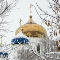 первый снег :: Андрей ЕВСЕЕВ