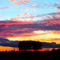 В красках заката :: Анна Пацеева