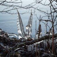Причуды природы и погоды. :: Elena Klimova