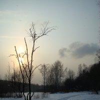 Воспоминания о настоящей зиме (2011-2012) :: Андрей Лукьянов