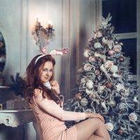Рождественский кролик 2 :: Виктор Седов