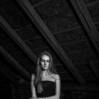 Из мрака :: Анастасия Макиенко