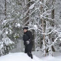 Прогулка в лесу :: Татьяна Крэчун