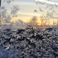 Мороз рисует :: Татьяна Крэчун