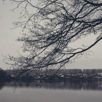 Мрачные тона :: Алёна Бадьина