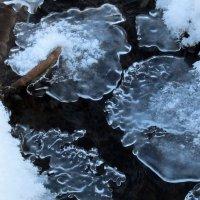 Ледяные узоры :: Анатолий