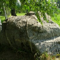 Камень-исполин :: Виктор Мухин
