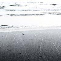 Пёрышко на берегу :: Genych