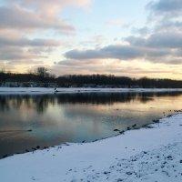 На зимнем берегу... :: Николай Дони