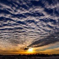 Перисто-слоистые облака на закате дня. (30.12.2015) :: Анатолий Клепешнёв