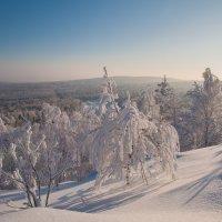 Морозный полдень :: vladimir Bormotov