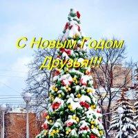 С Новым годом!!! :: Юрий Толстогузов