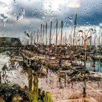 Rain in Herzlia :: maxim polak