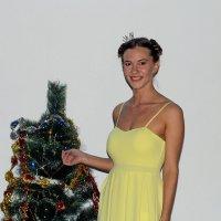 Принцесса на новогоднем вечере :: Сергей