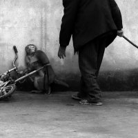 Monkey Training for a Circus / автор фото Yongzhi Chu, China :: Виктор | Индеец Острие Бревна