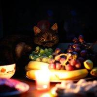 Новогодний натюрморт :: Sergey Tyulev