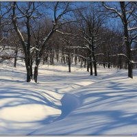 Снега и тени :: Андрей Заломленков