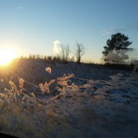Солнце (вечерний пейзаж из окна машины) :: Юрий Бондер