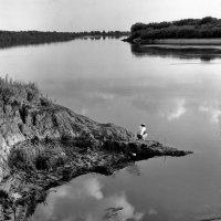 Река Ока :: Валерий Толмачев