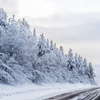 Зимняя дорога :: Андрей Пугачев