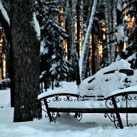 Зима.Сибирь. :: Елена
