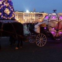 Старинная карета на Дворцовой площади! :: Светлана Калмыкова