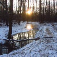 Мороз и солнце. И чуть-чуть снега (вариации) :: Андрей Лукьянов