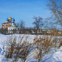 Вид на Рязанский Кремль с вала. :: Лесо-Вед (Баранов)