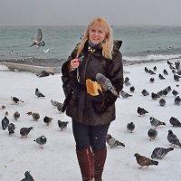 Девушка с голубем :: Виктор Шандыбин