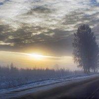 Морозное утро :: Александр