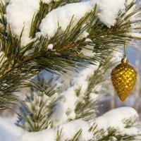 зима :: Валентина Коннова