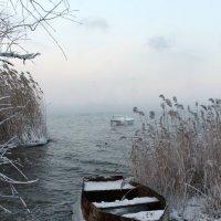 ...теперь - до тепла... :: Александр Герасенков