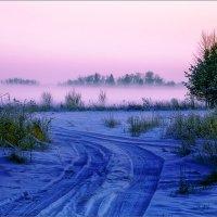 Сиреневый туман... :: Александр Никитинский