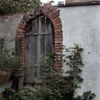 Дверь в белой стене :: Dmitry Swanson