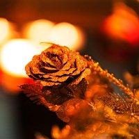 Вечером, под Новый год... :: Иван Клёц