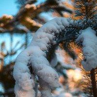 Зимние зарисовки :: Сергей Брагин