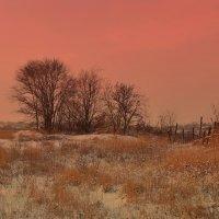 Зимний закат за околицей... :: евгения