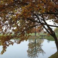 Осень :: Paparazzi