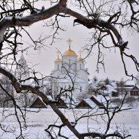 Рисунки зимнего дерева :: Леонид Иванчук