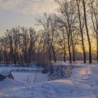Морозное утро,но солнечное! :: Сергей Корнев