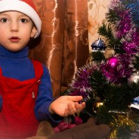А подарков нету!!! :: Irina Novikova