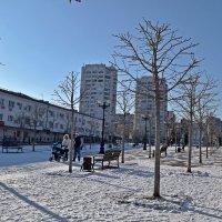 Вот и зима наступила :: Татьяна Миронова