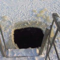 Я передумал купаться в черном квадрате!!! :: Андрей Лукьянов