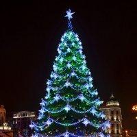 Ёлка на Пушкинской площади. :: Oleg4618 Шутченко