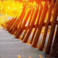 Мороз и солнце... :: Александр Никитинский