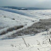 На холмах :: Дмитрий Арсеньев