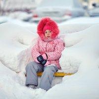 В объятьях зимы.На заснеженной скамейке. :: Алексей Хаустов